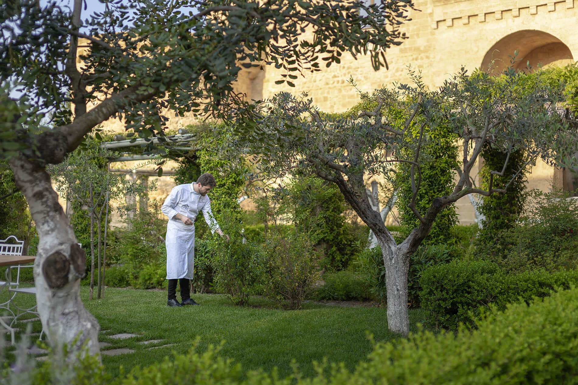 Chef Tommaso Sanguedolce selects herbs from the Castello di Ugento garden for Il Tempo Nuovo Restaurant